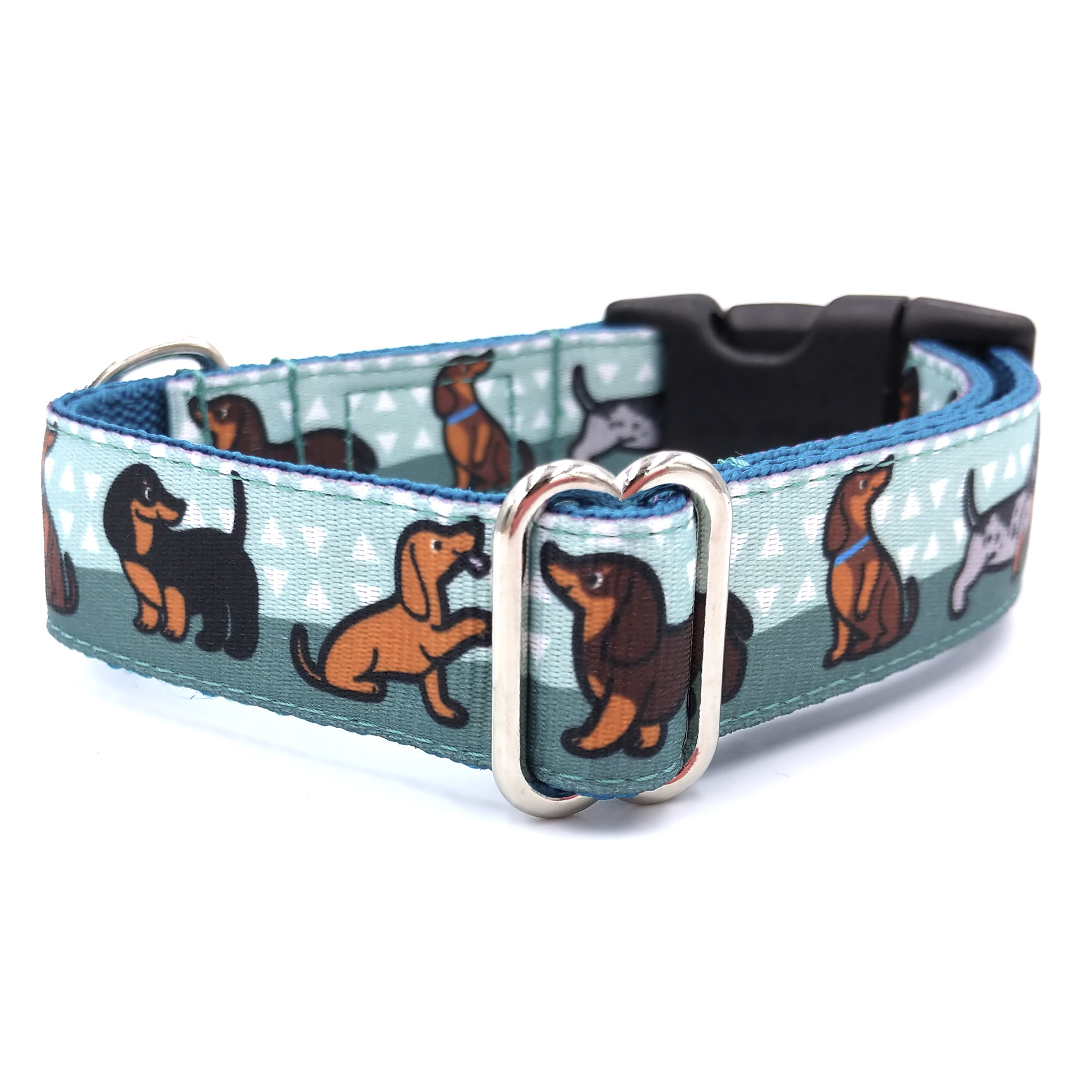 Doxie boy dog collar