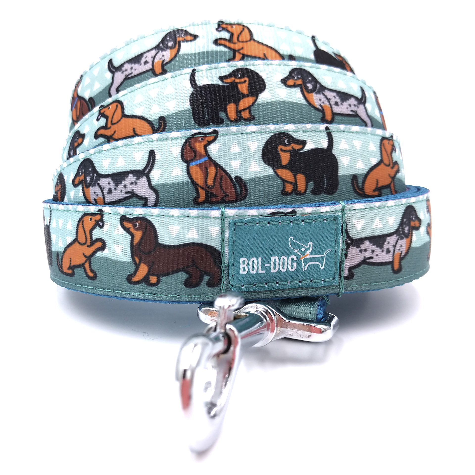 Doxie boy dog leash
