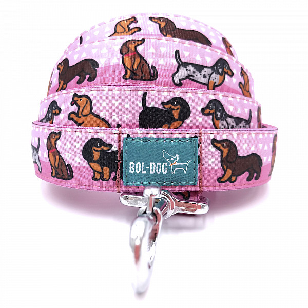 Doxie girl leash