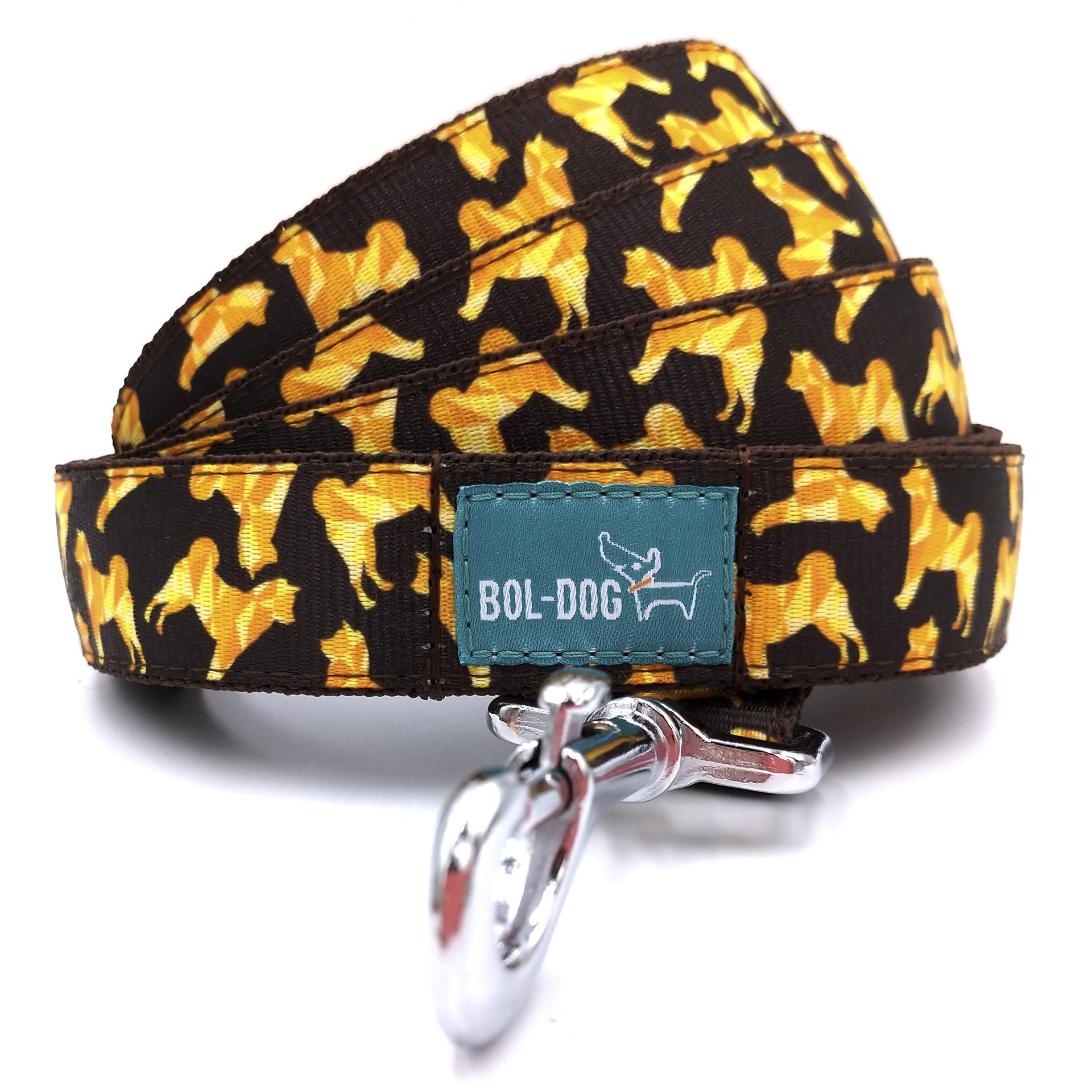 Akita dog leash
