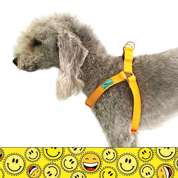 Smiley dog harness