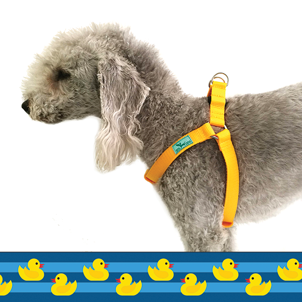 Rubber duck dog harness