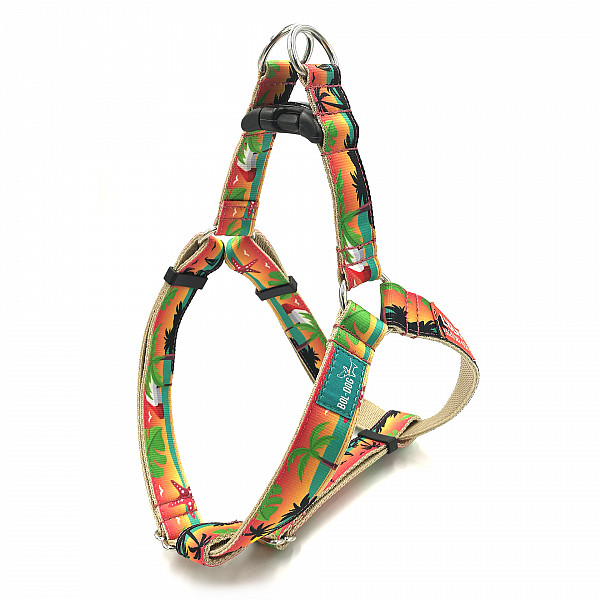 Holiday dog harness