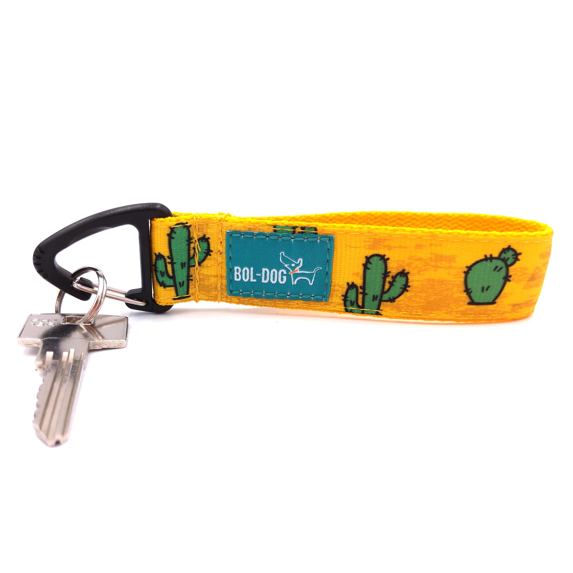 Cactus key holder