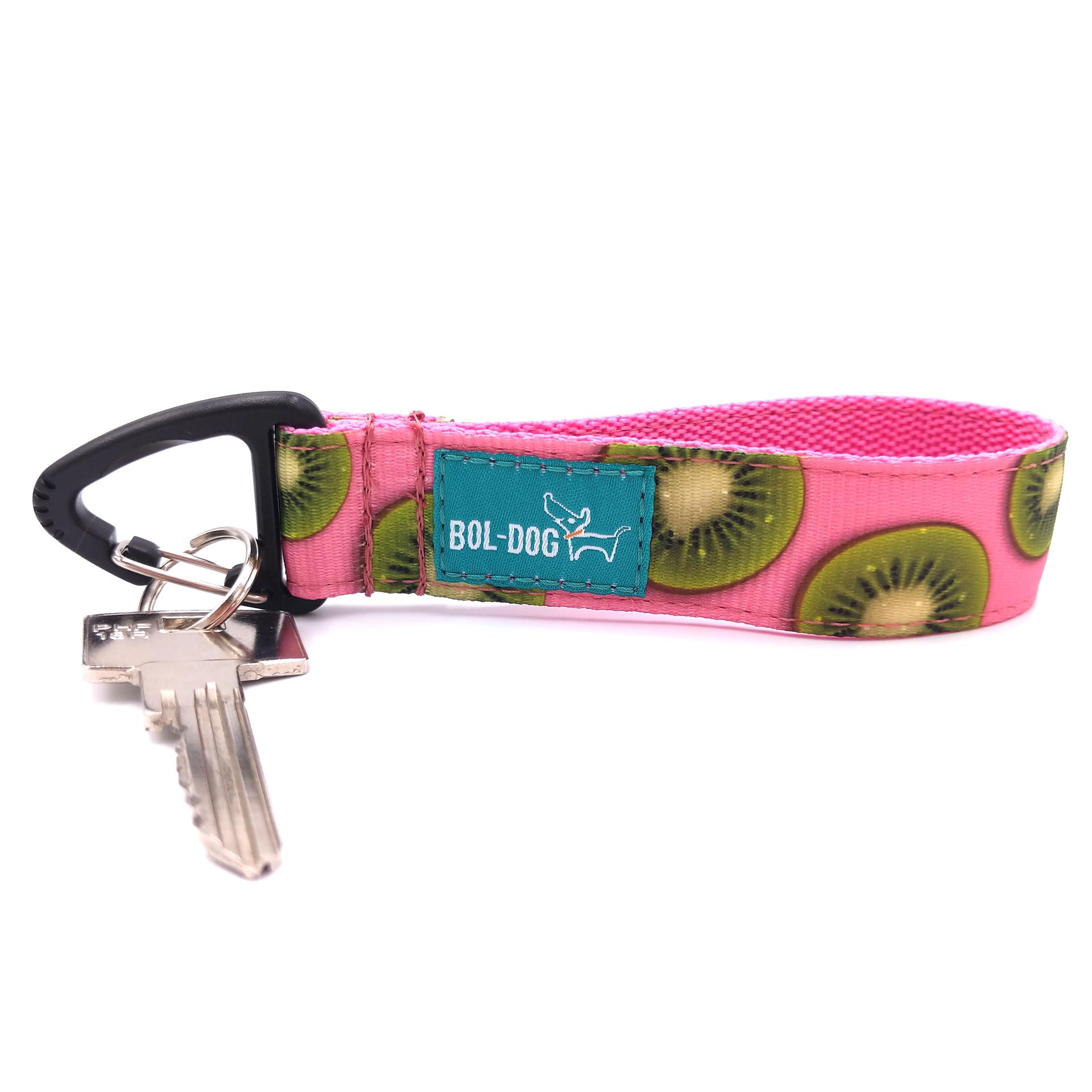 Kiwi key holder