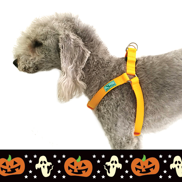 Halloween dog harness