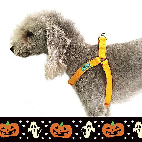 Halloween harness