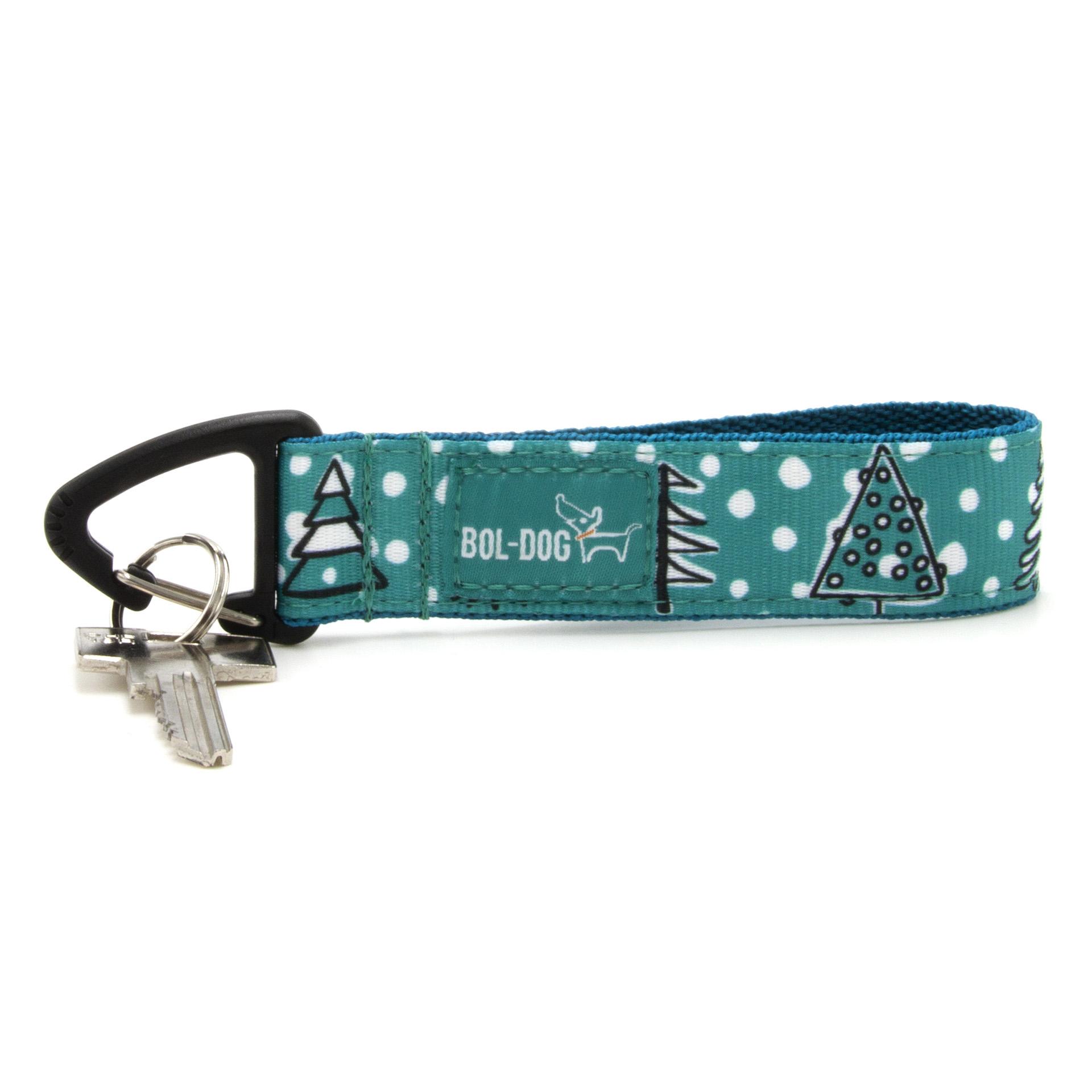 Snow cover key holder