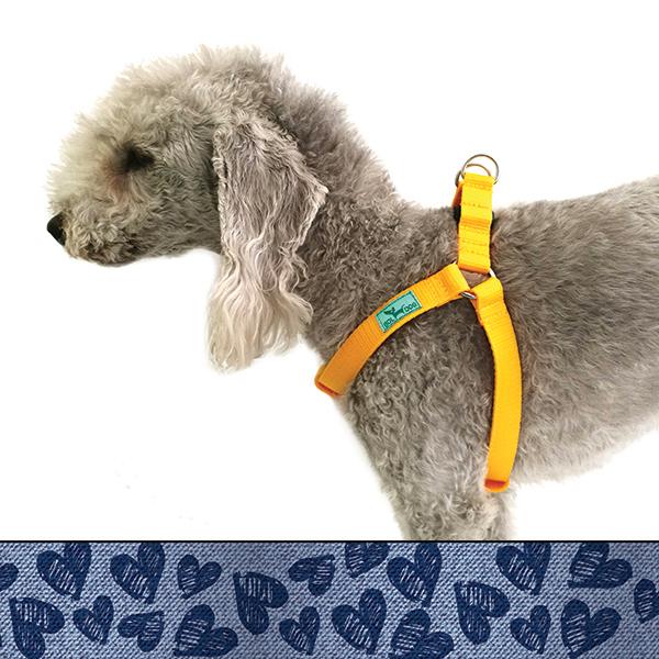 Indigo heart dog harness