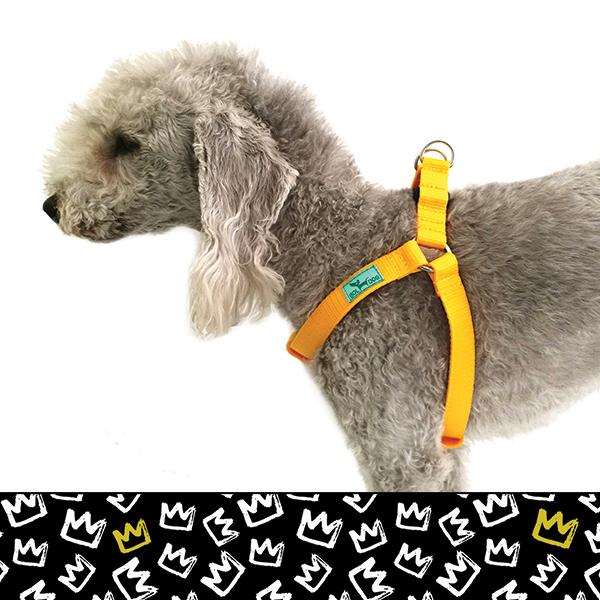 King dog harness