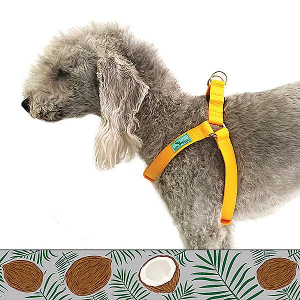 Kókusz kutyahám