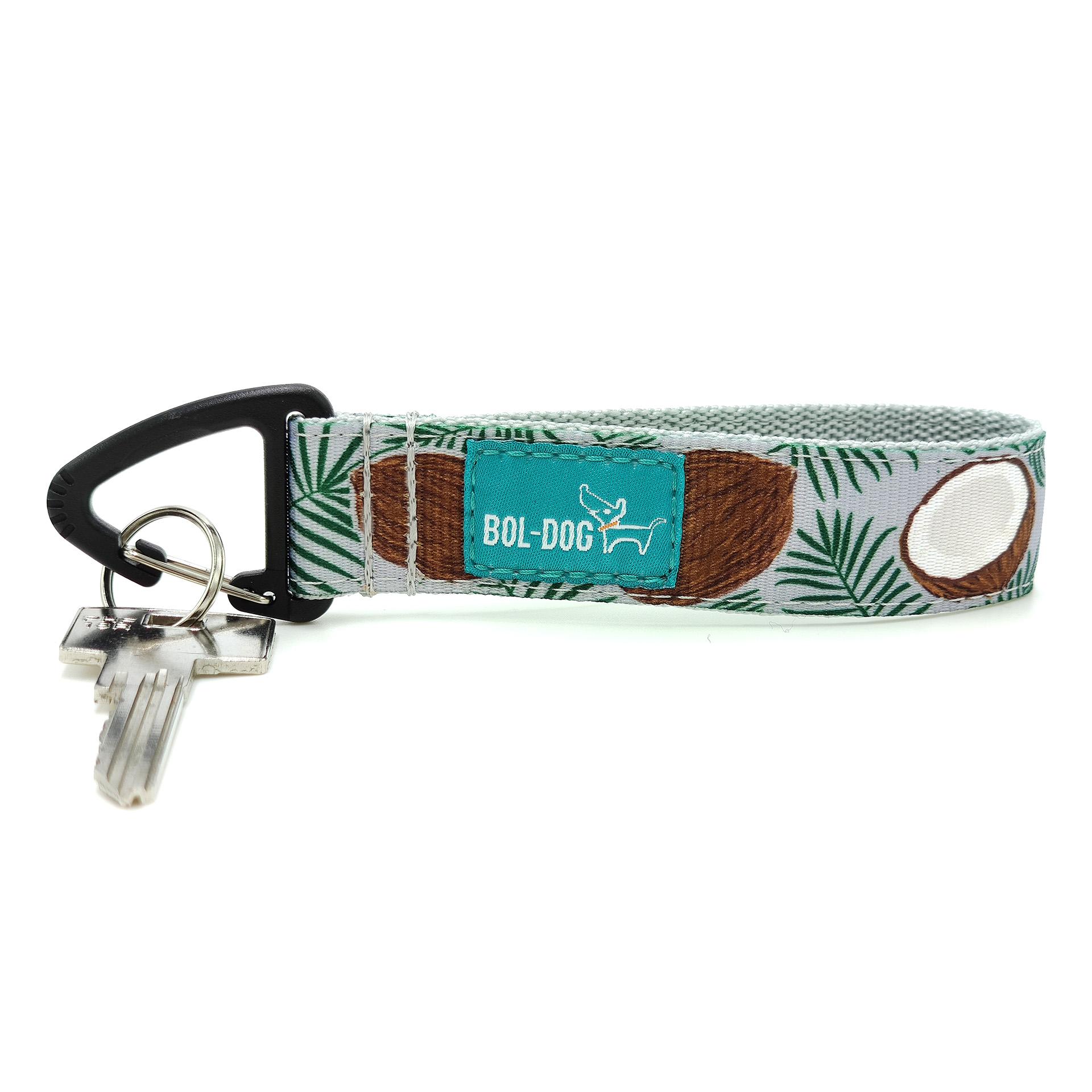 Coconut key holder