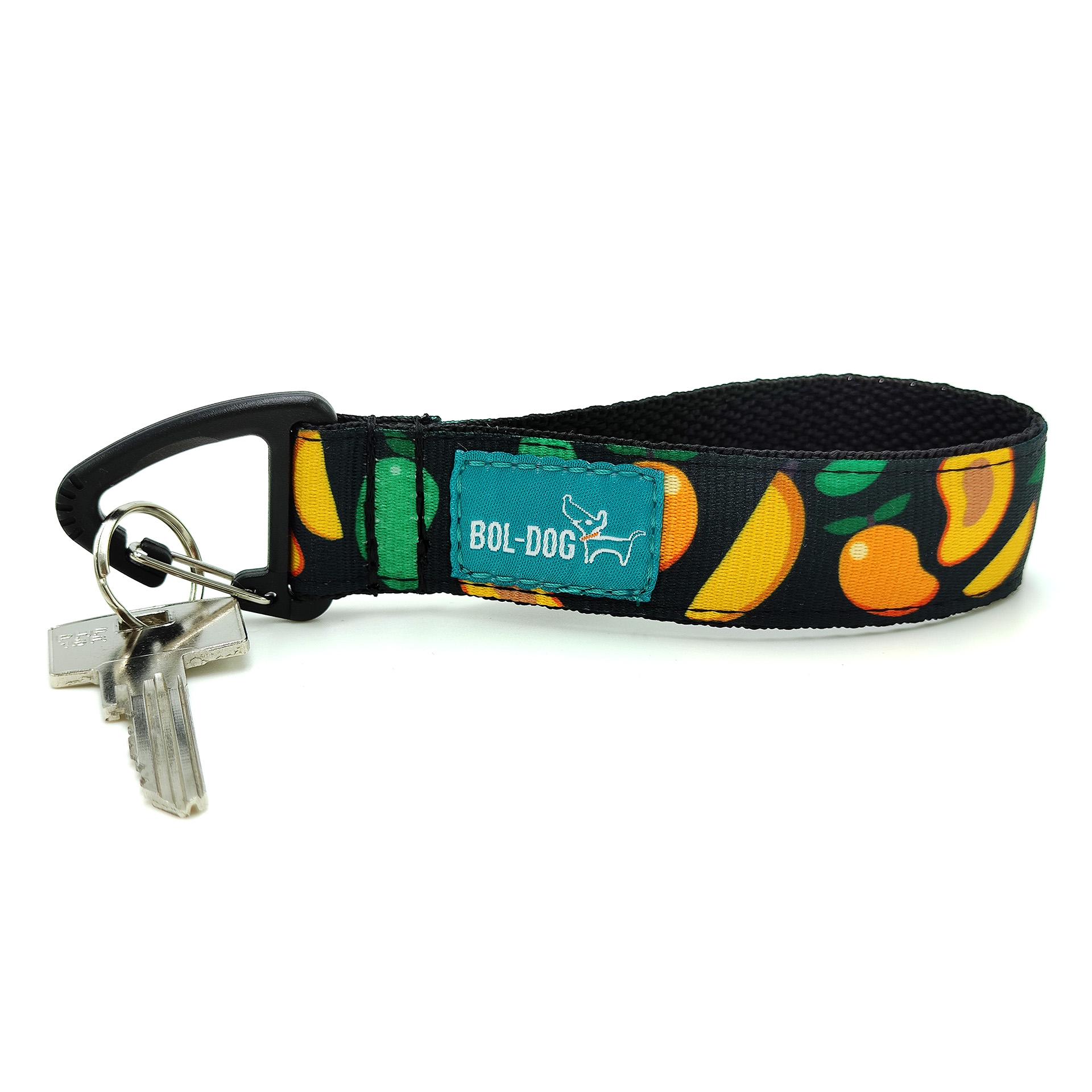 Mango key holder